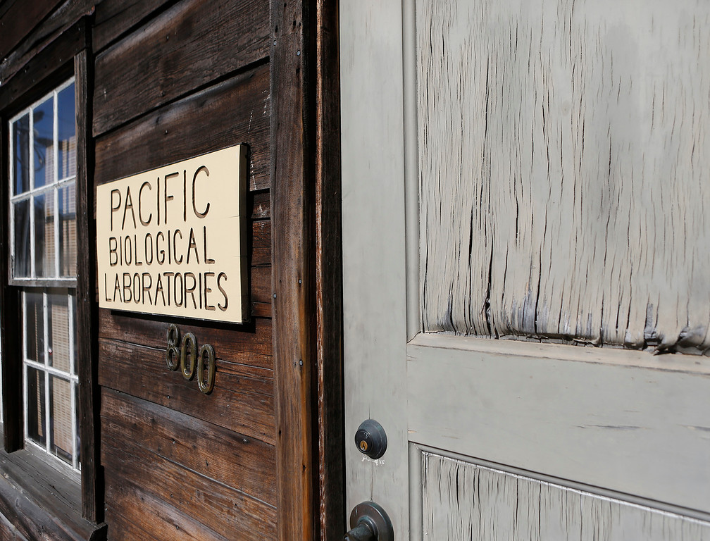 . The weather-beaten door Doc Ricketts Lab in Monterey on Monday September 25, 2017. Frank Wright, the last living member of Doc Ricketts Lab Club recently passed away.(David Royal/Herald Correspondent)