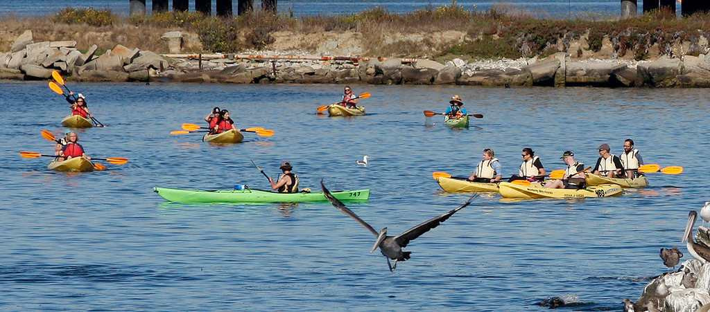 . Kayakers take advantage of the nice weather while paddling around the Elkhorn Slough in Moss Landing on Wednesday, Sept. 27, 2017.  (Vern Fisher - Monterey Herald)