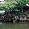 DSC_0051 shang