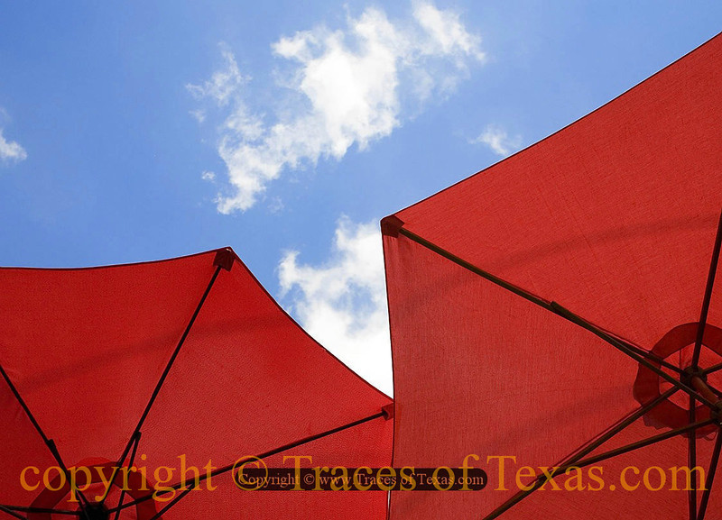Title:   Cappucino Covers<br /> <br /> Comments: Even Texans like a good cup of cappucino. <br /> <br /> Location: Austin, Texas
