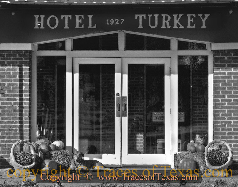 Title:   Every Hotel Dog Has Its Day<br /> <br /> Comments: This ferocious guard dog rolled over and begged to be scratched on his belly as I approached the Hotel Turkey.<br /> <br /> Location: Turkey, Texas