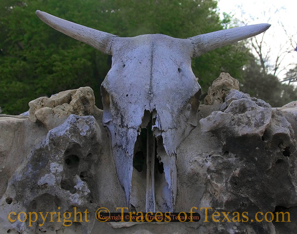 Title:   He Had Told Me that He was Serious about Building his Fence<br /> <br /> Comments: Artists and their fences! Sheesh!<br /> <br /> Location: Austin