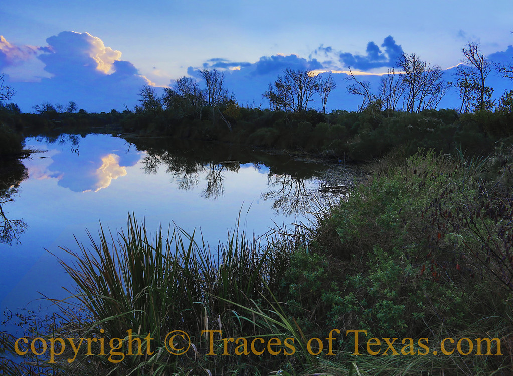 Title:  <br /> <br /> Comments:<br /> <br /> Location:  Anahuac National Wildlife Refuge