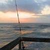 Title:  Gone Sharkin' <br /> <br /> Comments: <br /> <br /> Location: Port Aransas