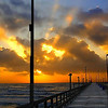 Title:   Pelican on a Stick<br /> <br /> Comments: There is divinity in fishing from the Horace Caldwell Pier on an early Sunday morning.  The word is legion among the fishes,<br /> <br /> Location: Port Aransas, Texas