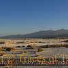 Title:  Sun Salutation<br /> <br /> Comments: There could hardly be anything better than early-morning yoga poses on the salt flat.<br /> <br /> Location: Salt Flat