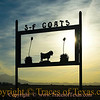 Title:   Goats, Anyone?<br /> <br /> Comments: If you need a goat, the folks at S-F Goats in Dell City will fix you right up.<br /> <br /> Location: Dell City, Texas