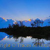 Title: Bluer than Velvet Was the Night <br /> <br /> Comments: <br /> <br /> Location: Anahuac National Wildlife Refuge