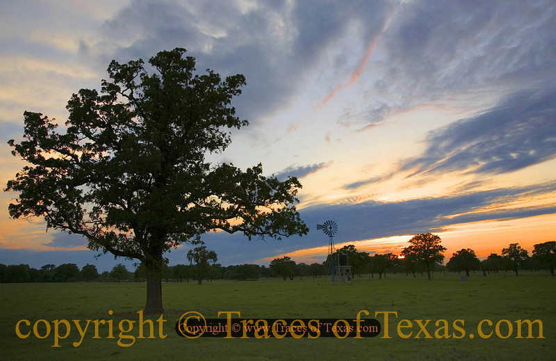 Title:   I Can't Light No More of Your Darkness <br /> <br /> Comments: Losing everything was like the sun going down on me. <br /> <br /> Location: Columbus, Texas