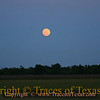 Title:   Moon Over .... Katy, Texas?<br /> <br /> Comments: Have you ever felt a southern night?<br /> <br /> Location: Katy