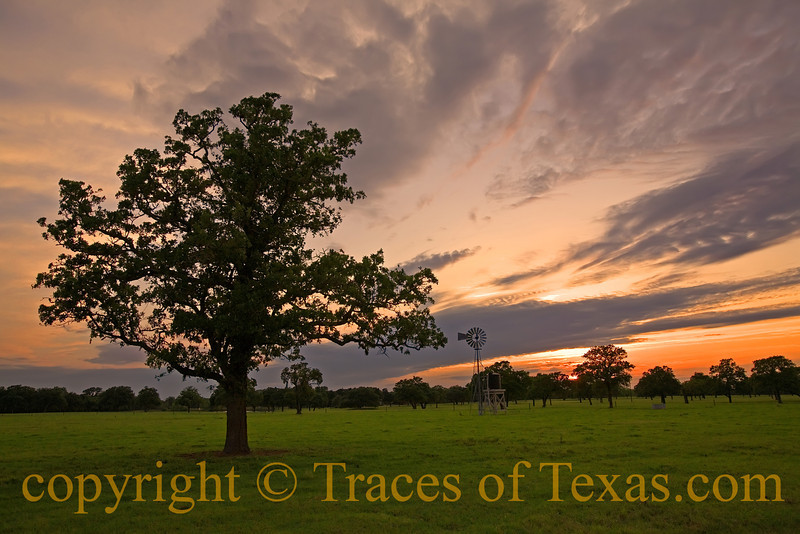 Title: I Can't Light No More of Your Darkness<br /> <br /> Comments: Random Texas sunset scene.  # 3425629. in a continuing series. <br /> <br /> Location: Columbus