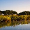 Title:  Goodbye to a River<br /> <br /> Comments:<br /> <br /> Location:  On the Pedernales near Dripping Springs