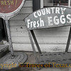 Title:   So I Drove all the way into Town .... and They were Out of Eggs.<br /> <br /> Comments: Woe is me.<br /> <br /> Location: Manheim