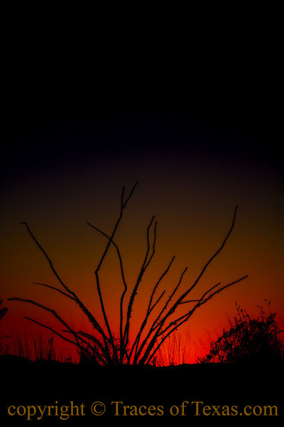 Title:   Meditation on the Meaning of Morning <br /> <br /> Comments: <br /> <br /> Location: Lajitas