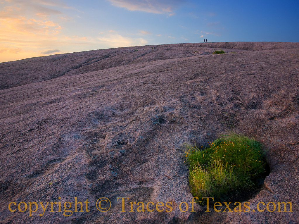 <br>Title: Mere Specks  Comments: The two guys at the top of Enchanted Rock look like little bugs.  That is a vernal pool in the foreground, filled with flowers.  The rock is some of the oldest on earth: a billion years.  The rise of Homo Sapiens/Mankind is a pimple on the butt of this rock's geologic timeline.  Location: Fredricksburg