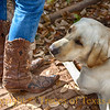<br>This yellow lab was sad because he was not allowed on the dance floor!<br><br>Luckenbach
