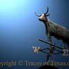 <br>Title: I Thought I'd Seen Every Longhorn Doohickey on the Market  Comments: I thought that I'd seen just about every kind of Longhorn-related doodad, gewgaw, and accoutrement under the sun. Pencil sharpeners, beer can openers, rugs, toaster ovens, toilet seats ----- I've seen them all. But then I saw this Longhorn weather vane on a house by the side of the road and realized that I will NEVER see it all.    Location: Gonzales