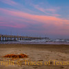 Title: Praise for Them Springing Fresh from the World<br /> <br /> Comments: <br /> <br /> Location: Port Aransas