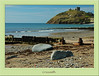 Criccieth beach and Castle. More pictures of this castle can be found in Castles and Abbeys gallery