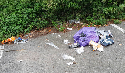 Sept' 3rd 2021 Domestic waste fly tipped in Victoria park