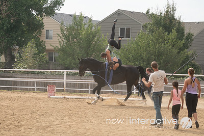 Horse valuters