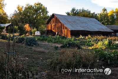 Barn on a small organic farm - niwot, Colorado