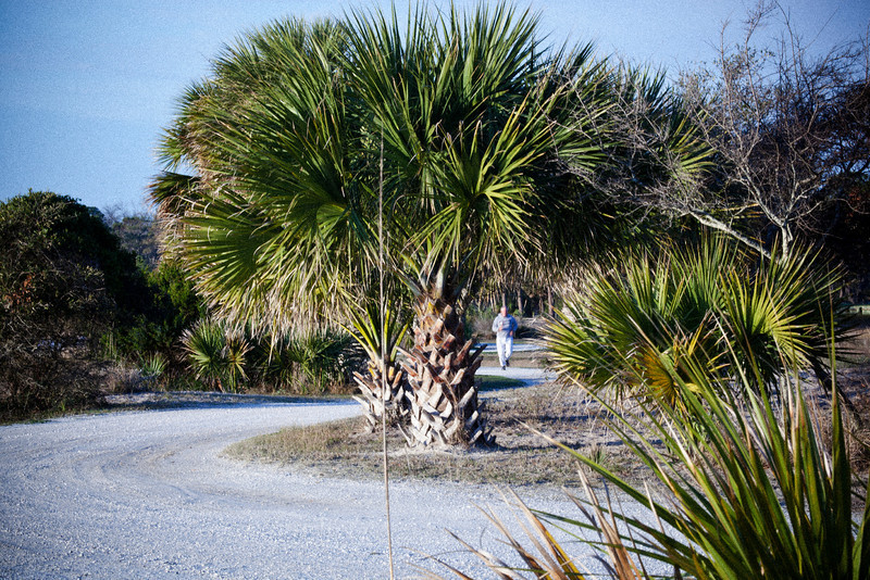 The beach road that runs along the Calibogue Sound in Haig Point on Daufuskie Island, SC is one of the most peaceful places to run, walk, stroll or strut I have ever experienced. Ocean surf crackles through oyster shells, palm trees sway and crackle in the breeze, dolphins play just off the surfbreak and it all comes together just fine.