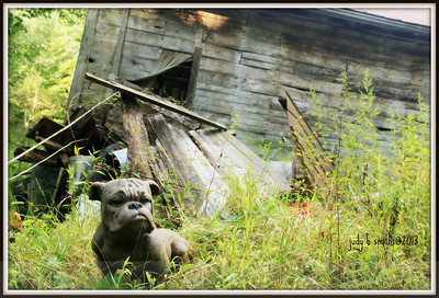 IMG_3503 guard dog