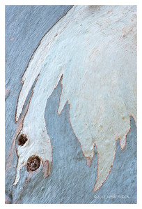 Mare Island Abstract 1