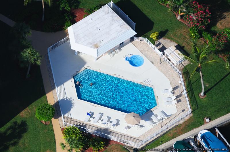 Swimming pool - Marco Island, Florida