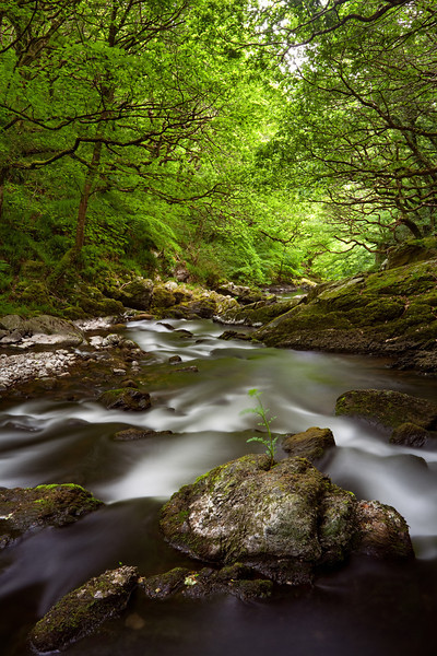 River Dart, Dartmoor, Devon
