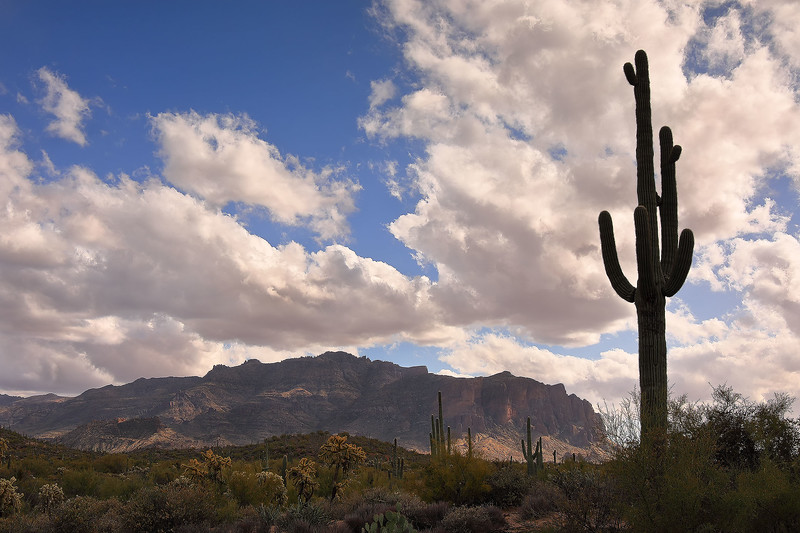 2 - Saguaro and Superstition Mountains, Arizona