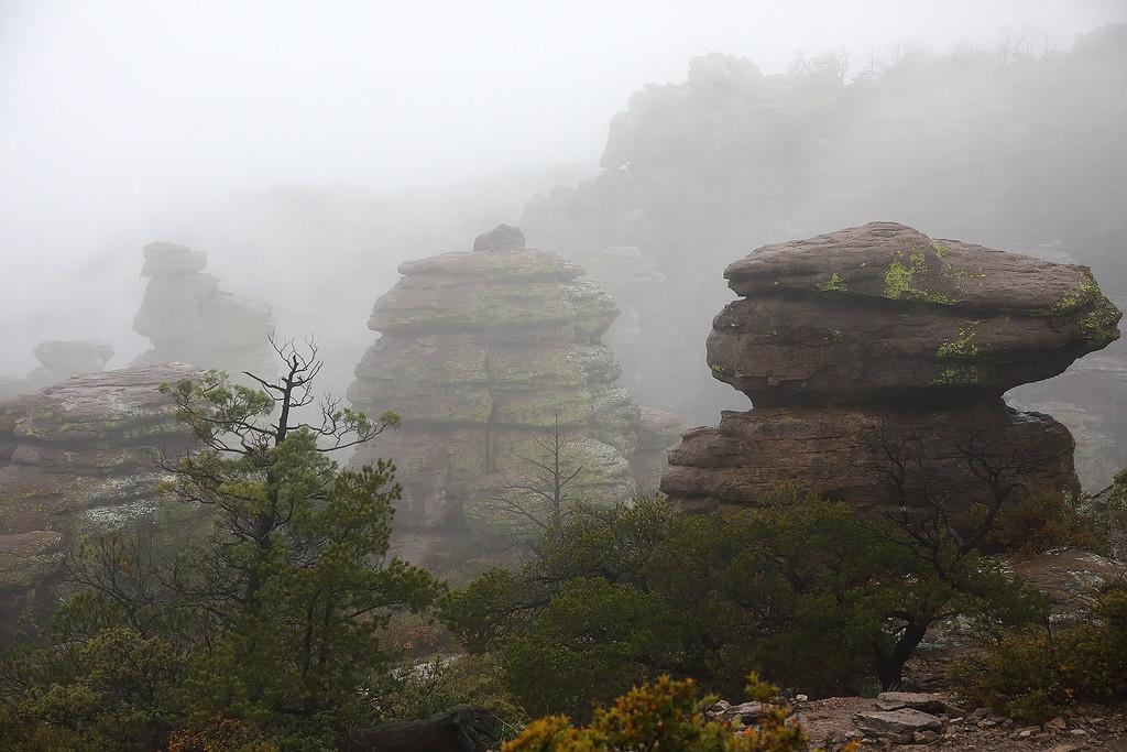 Rocks and fog, Chiricahua National Monument, Arizona