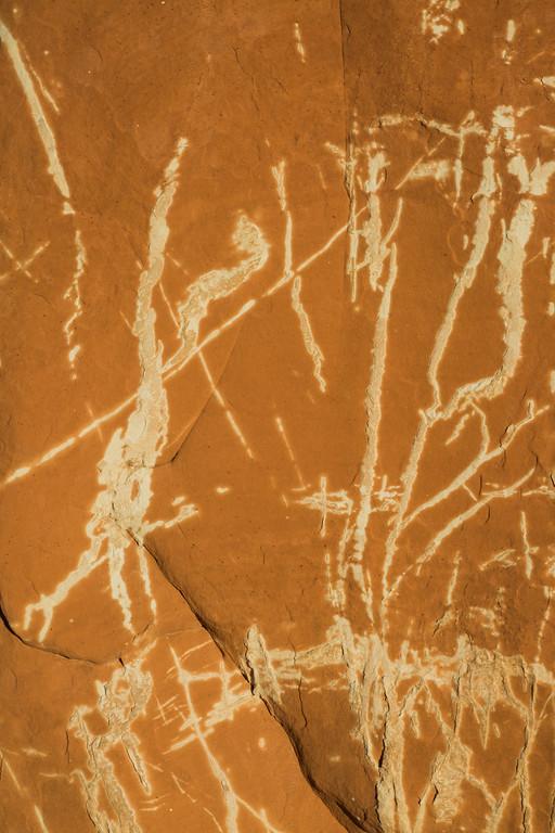Taken on the Hopi Reservation, Arizona, USA.