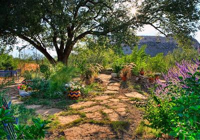 Peyton's Garden
