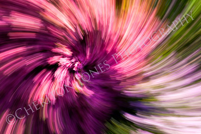 Colorful Abstract Background Flower Garden Spiral