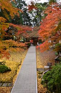 錦州の大興善寺