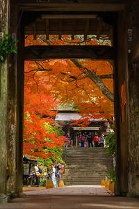 秋の古刹への入門
