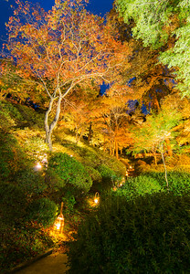 深秋への誘導灯