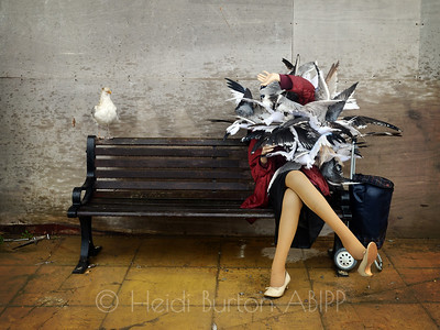 Seagull attack by Banksy