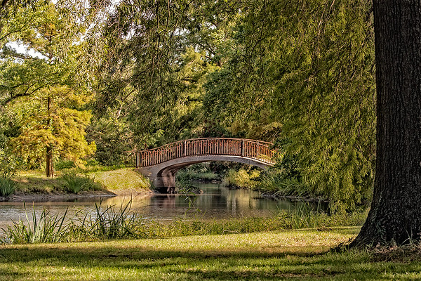 Arch Bridge September