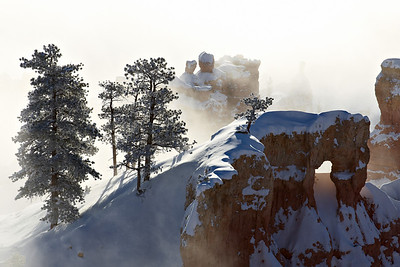 """Snowy Morning at Bryce Canyon""  Taken at Bryce Canyon National Park, Utah, USA."