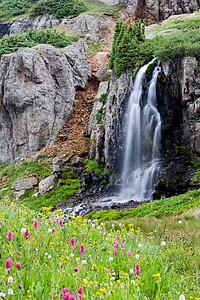 """Porphyry Falls""  A most lovely waterfall and wildflowers in Porphyry Basin. It is in the San Juan National Forest, Colorado, USA."