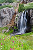 """Porphyry Falls""<br /> <br /> A most lovely waterfall and wildflowers in Porphyry Basin. It is in the San Juan National Forest, Colorado, USA."