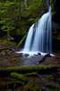 """""""Fern Falls""""<br /> <br /> This was a real find, a waterfall that we had not ever heard about. It's Fern Falls, in the Coeur d'Alene National Forest, Idaho, USA. The falls are on a tributary of Yellow Dog Creek."""