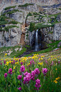 """Wet and Wild""  Porphyry Falls and a variety of wildflowers. Taken in the San Juan National Forest, Colorado, USA."