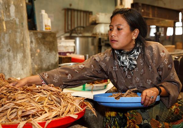 Cutting fiber in paper factory (Thimphu)