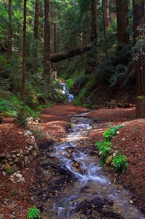 Castro Creek Canyon