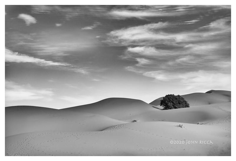 Footprints In The Sahara.jpg
