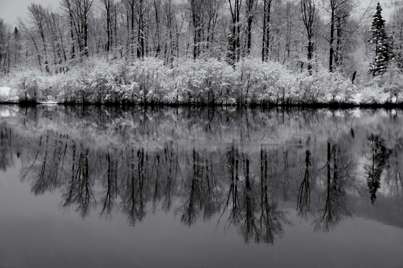 Winter Reflection,  Easton Ponds, Washington